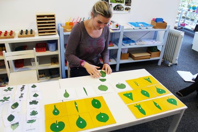 formation Montessori culture 3-6 ans : botanique