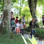 promenade - parc Majolan - école Montessori Internationale Bordeaux