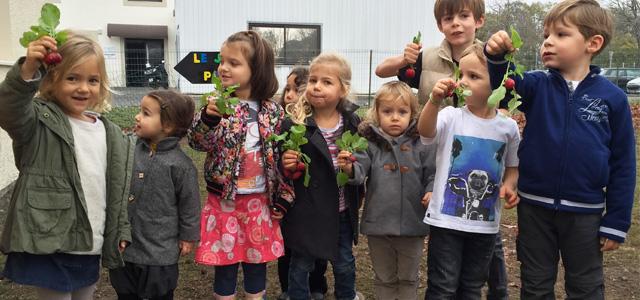 Etudier la nature en Montessori