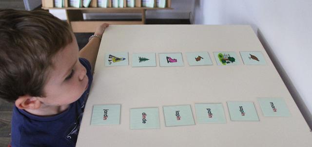 formation montessori 6-12 ans langage 1