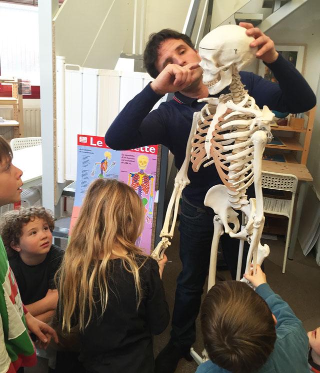 squelette montessori international bordeaux