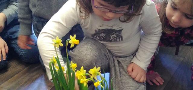 Table de nature du printemps à l'école Montessori
