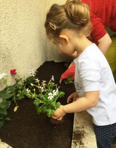 montessori international bordeaux fleurs 6