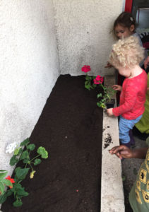 montessori international bordeaux fleurs 7