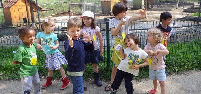 Sortie de l'école Montessori : le lapin et la poule