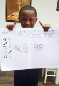 montessori papillons 9