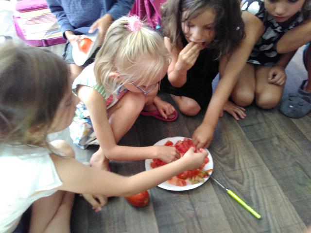 degustation potager tomates montessori