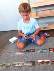 montessori international bordeaux culture