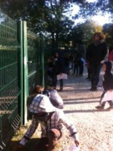 montessori school trip 4
