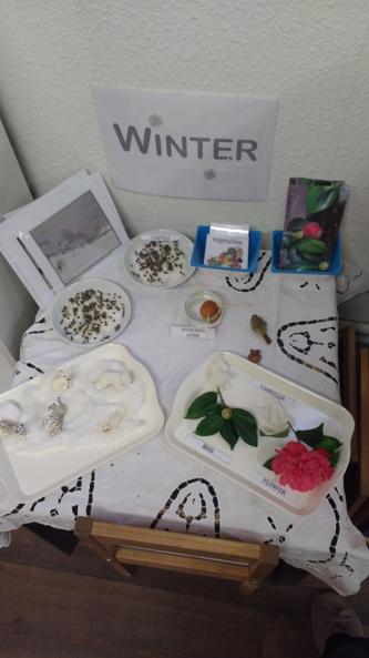 table nature montessori hiver 1