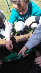 montessori international bordeaux printemps 12