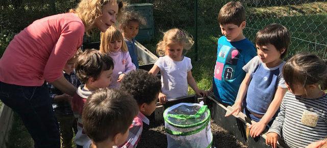 Les insectes en maternelle Montessori