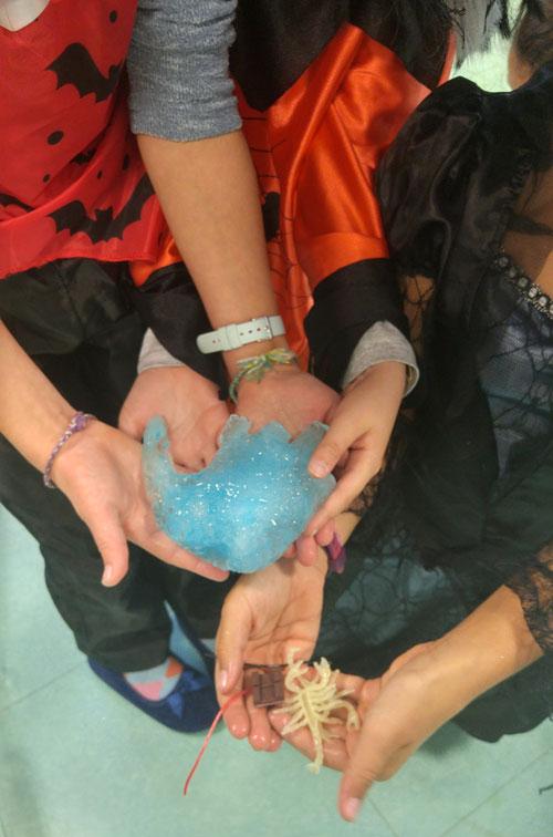 montessori international bordeaux experiences 2