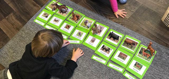 Les cartes de nomenclature Montessori