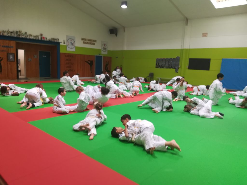 montessori international bordeaux judo 2